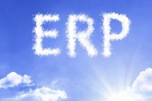 Oracle Security Concerns and Oracle ERP